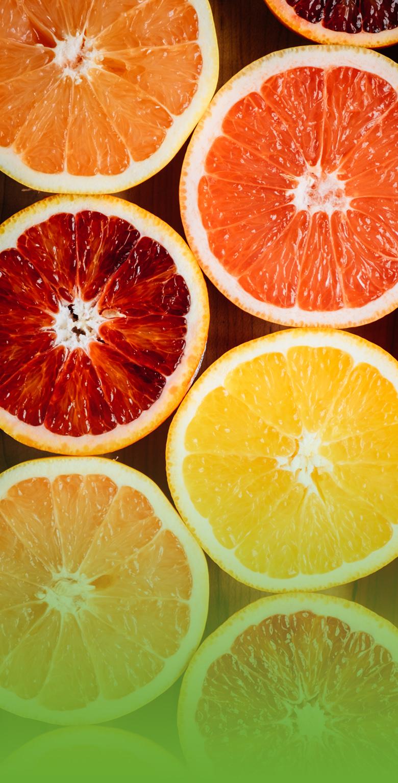 grid-vitamin-ve-mineraller