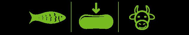 krill-oil-semboller