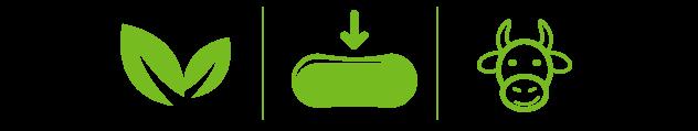 omega7-semboller